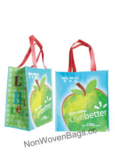 Non Woven Bags, PP Woven Bags China Manufacturer